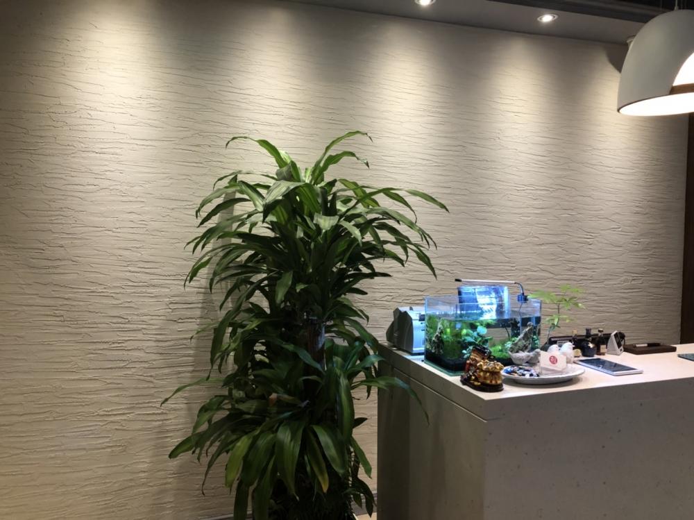 珪藻土工程/新竹